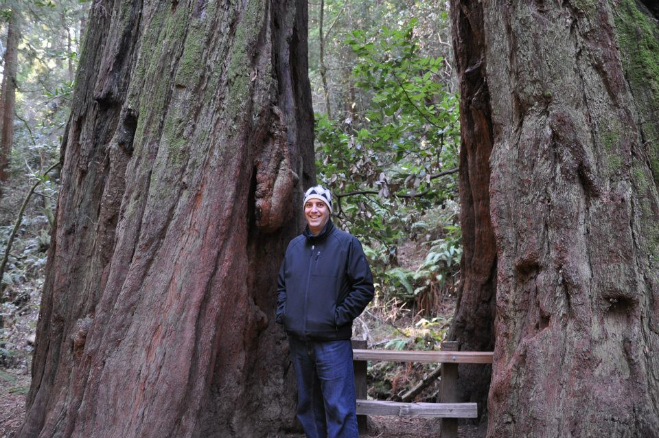 Muir Woods National Monument (4/6)