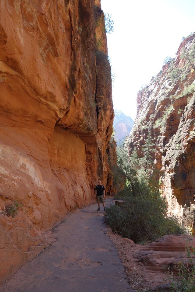 Angels Landing-Zion National Park (6/6)